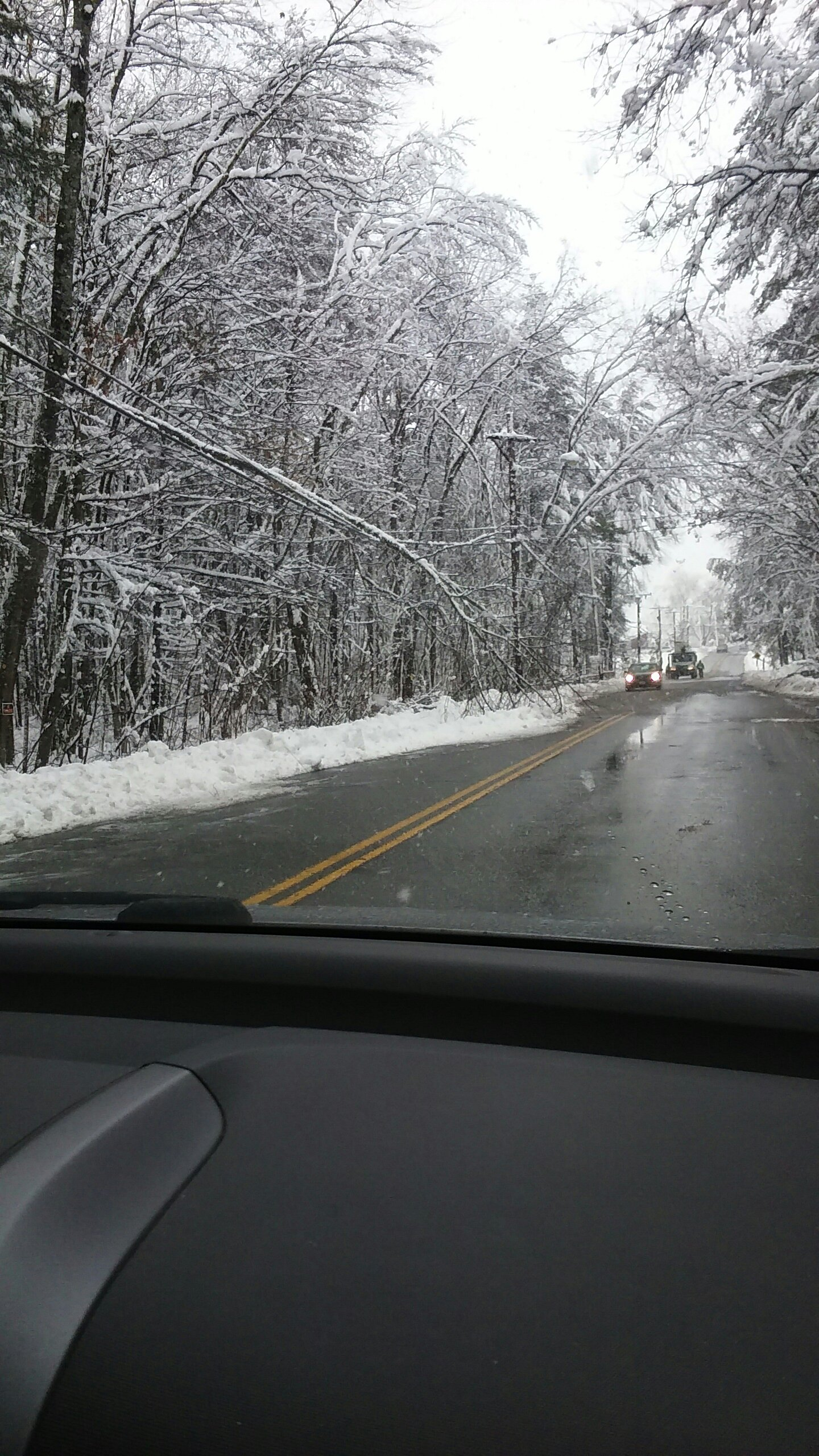 More snapped branches on power line - Frost Road.